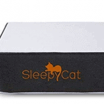 Top 7 Best Mattress In India: 2019 Reviews & Buying Guide