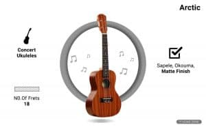 Arctic AC-UK24SPL Ukulele Kit