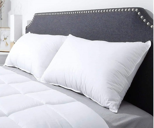 Compal Plush Gel Bed Pillow