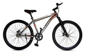 Cradiac 29 Inch Mountain Bike
