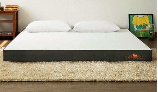 SleepyCat 6 Inch Mattress