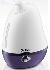home spa humidifier