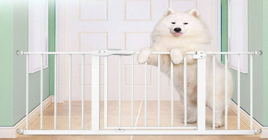 Best Baby Safety Gate or Kids Barriers in India